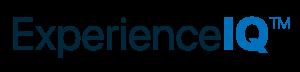 experience iq logo